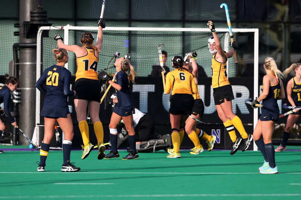 The Iowa Hawkeyes celebrate their 2-1 victory over the the Michigan Wolverines in the semi-finals of the Big Ten Tournament Friday, November 2, 2018 at Lakeside Field on the campus of Northwestern University in Evanston, Ill. (Brian Ray/hawkeyesports.com)