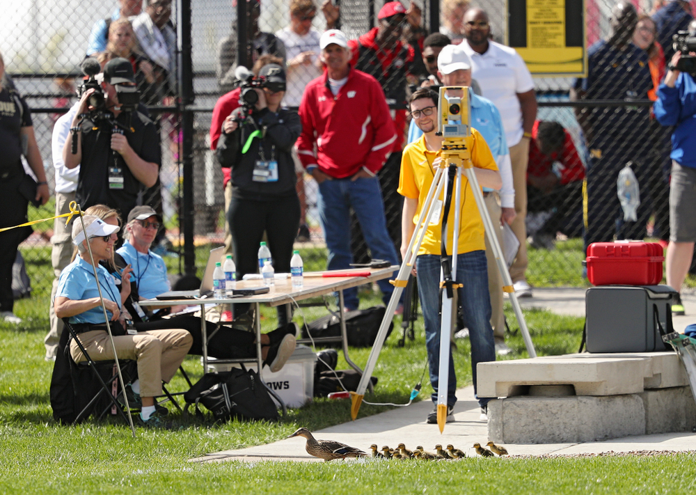 A family of ducks walk through the women's hammer throw event on the first day of the Big Ten Outdoor Track and Field Championships at Francis X. Cretzmeyer Track in Iowa City on Friday, May. 10, 2019. (Stephen Mally/hawkeyesports.com)