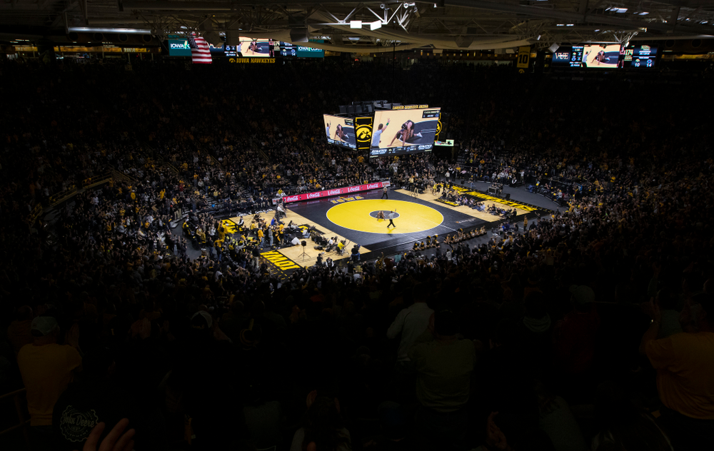 The Iowa Hawkeyes against Penn State Friday, January 31, 2020 at Carver-Hawkeye Arena. Warner won the match 4-2. (Brian Ray/hawkeyesports.com)