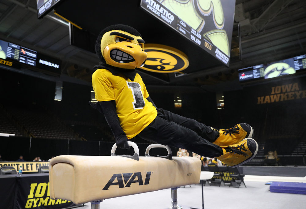 Herky The Hawk on the pommel horse against Oklahoma Saturday, February 9, 2019 at Carver-Hawkeye Arena. (Brian Ray/hawkeyesports.com)