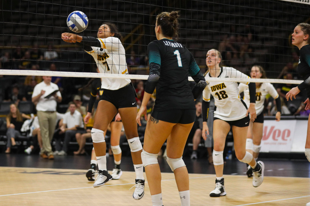 Iowa Hawkeyes setter Brie Orr (7) against Coastal Carolina Friday, September 20, 2019 at Carver-Hawkeye Arena. (Lily Smith/hawkeyesports.com)