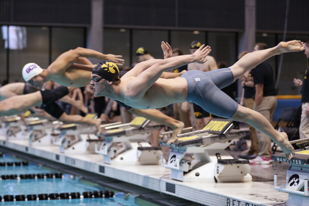 Iowa's Caleb Babb swims the 50 yard freestyle  Thursday, November 15, 2018 during the 2018 Hawkeye Invitational at the Campus Recreation and Wellness Center. (Brian Ray/hawkeyesports.com)