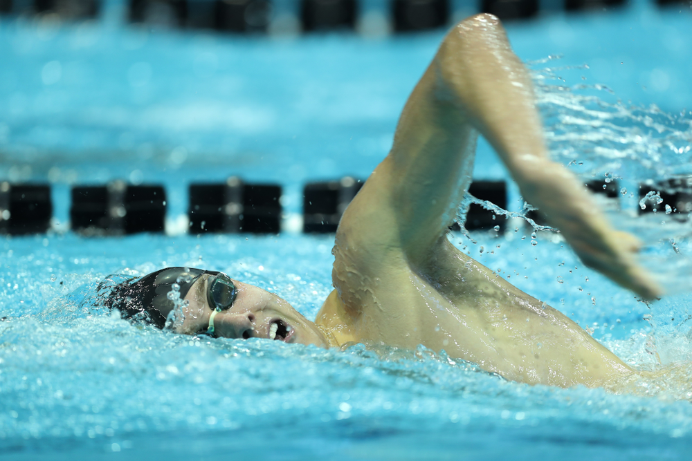 Iowa's Thomas Pederson swims the 500 yard freestyle Thursday, November 15, 2018 during the 2018 Hawkeye Invitational at the Campus Recreation and Wellness Center. (Brian Ray/hawkeyesports.com)