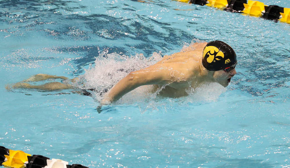 Iowa's Anze Fers Erzen competes in the 400-yard IM during the third day of the Hawkeye Invitational at the Campus Recreation and Wellness Center on November 16, 2018. (Tork Mason/hawkeyesports.com)