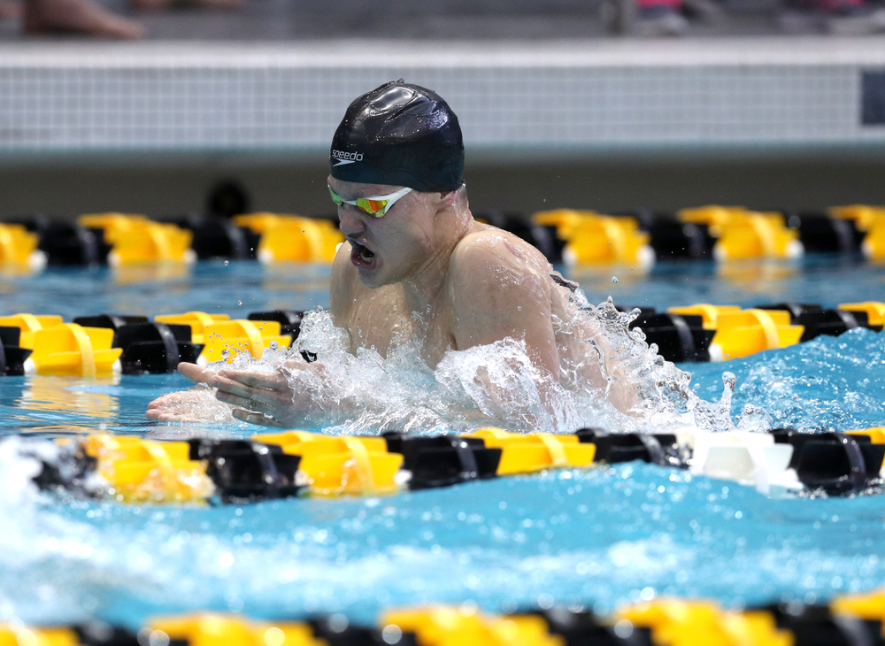 Iowa's Anze Fers Erzen competes in the 400-yard IM on the third day at the 2019 Big Ten Swimming and Diving Championships Thursday, February 28, 2019 at the Campus Wellness and Recreation Center. (Brian Ray/hawkeyesports.com)
