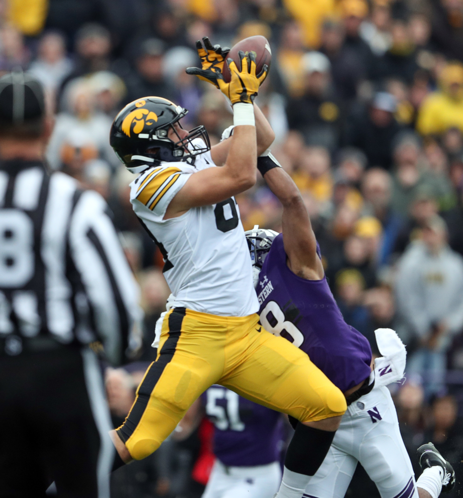 Iowa Hawkeyes tight end Sam LaPorta (84) against the Northwestern Wildcats Saturday, October 26, 2019 at Ryan Field in Evanston, Ill. (Brian Ray/hawkeyesports.com)