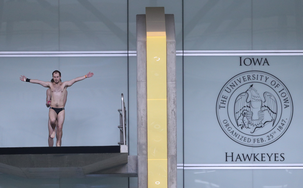 Iowa's Anton Hoherz competes on the platform during the 2019 Big Ten Men's Swimming and Diving Championships Saturday, March 2, 2019 at the Campus Wellness and Recreation Center. (Brian Ray/hawkeyesports.com)