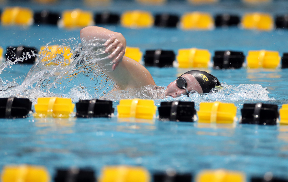 IowaÕs Taylor Hartley swims the 1,000 yard freestyle agains the Michigan Wolverines Friday, November 1, 2019 at the Campus Recreation and Wellness Center. (Brian Ray/hawkeyesports.com)