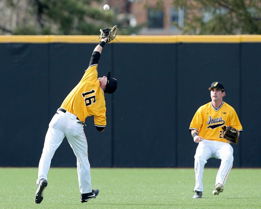 Iowa Hawkeyes shortstop Tanner Wetrich (16) pulls in a fly ball as left fielder Chris Whelan (28) looks on during the third inning of their game against Northern Illinois at Duane Banks Field in Iowa City on Tuesday, Apr. 16, 2019. (Stephen Mally/hawkeyesports.com)