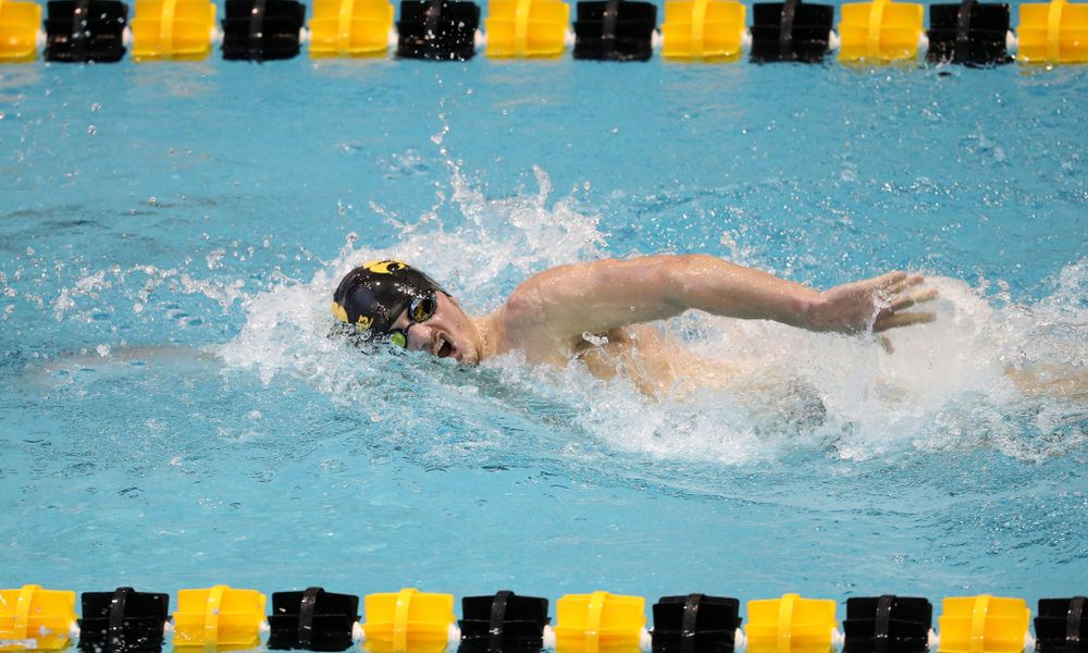 Iowa's Tom Schab swims the 1000 yard freestyle during a double dual against Wisconsin and Northwestern Saturday, January 19, 2019 at the Campus Recreation and Wellness Center. (Brian Ray/hawkeyesports.com)