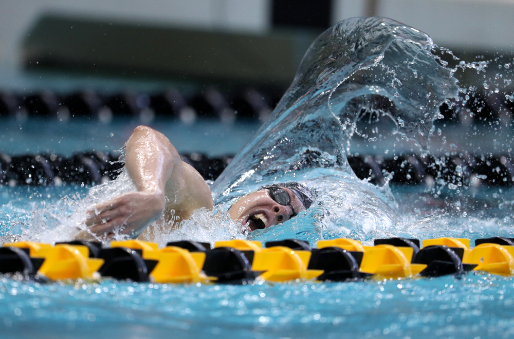 Iowa's Mateusz Arndt swims in the preliminaries of the 500-yard freestyle during the 2019 Big Ten Swimming and Diving Championships Thursday, February 28, 2019 at the Campus Wellness and Recreation Center. (Brian Ray/hawkeyesports.com)