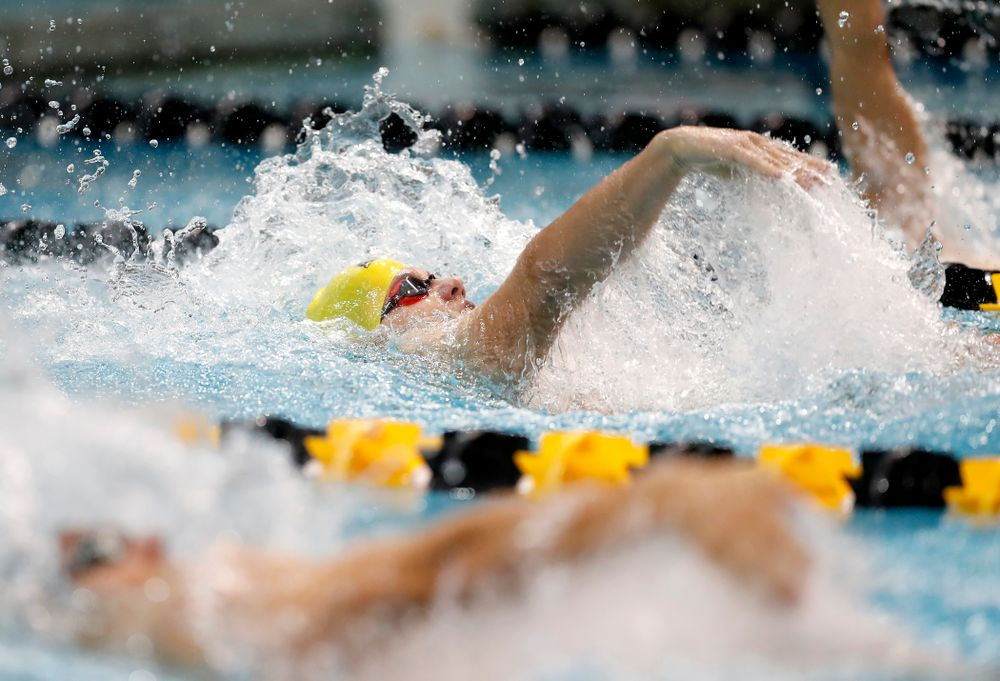 Anze Fers Erzen swims the 200 yard IM during the Black and Gold Intrasquad Saturday, September 29, 2018 at the Campus Recreation and Wellness Center. (Brian Ray/hawkeyesports.com)
